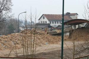 Tisa Duplica: kontaminirana biomasa dne 12.2.2011